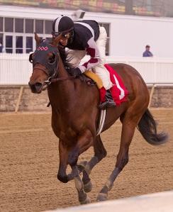 Jim McCue/Maryland Jockey Club