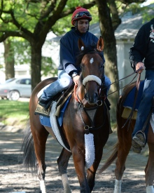 Wicked Strong and Kelvin Pahal. Photo credit NYRA/Susie Raisher