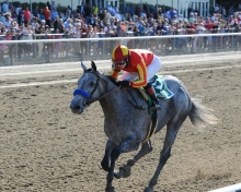 Rosie Napravnik guides Midnight Lucky in the Grade I Acorn, May 2013. Photo credit NYRA/Chelsea Durand