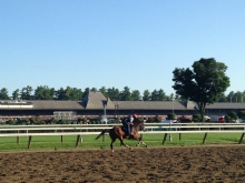 View from Saratoga backstretch July 2014