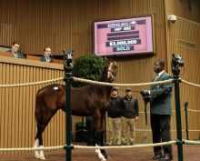 Keeneland Tapit weanling $3 million