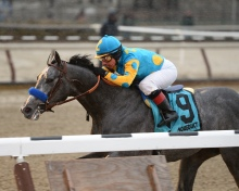 El Kabeir and C.C. Lopez winning the Jerome at Aqueduct