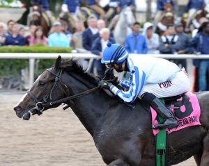 Upstart and Jose Ortiz win the Holy Bull. Photo credit Lauren King.