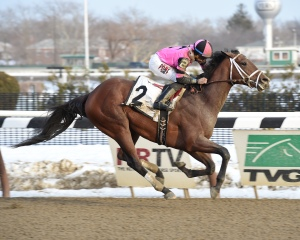 Far From Over and Manuel Franco take the Grade III Withers. Photo NYRA/Susie Raisher