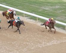 Far Right and Mike Smith winning the Smarty Jones. Coady Photography