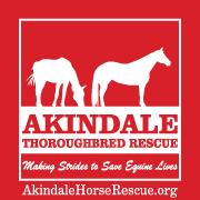 Akindale logo