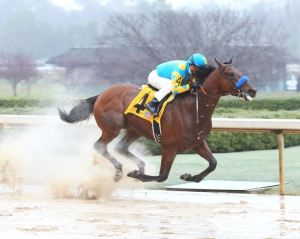 American Pharoah and Victor Espinoza in the Rebel. Coady Photography