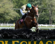 Barnstorming and Sean McDermott take the Michael G. Walsh Novice Stakes at Saratoga in 2013. Photo NYRA/Adam Coglianese