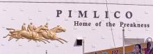 Pimlico photo