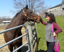Hanging out with Tie Break at Akindale Thoroughbred Rescue