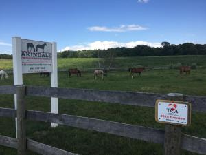 Akindale Farm in Pawling, NY, one of more than 40 TAA accreditated aftercare facilities. Photo courtesy of Akindale.