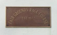 FG plaque