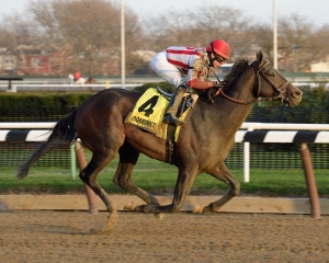 Flexibility and Irad Ortiz Jr. win the Jerome at Aqueduct earlier this month. NYRA/Chelsea Durand