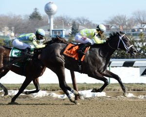 Sunny Ridge and Manny Franco win the Withers. Photo credit NYRA/Susie Raisher