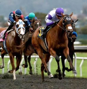 Frank Conversation and Mario Gutierrez take the California Derby. Photo courtesy Santa Anita/Golden Gate Fields