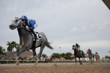Mohaymen and Junior Alvarado. Gulfstream Park photo