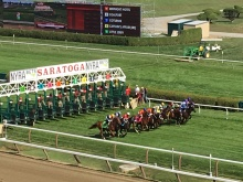 start of turf race
