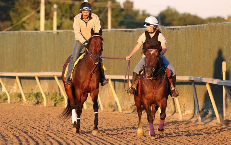 Kentucky Derby winner Nyquist and exercise rider Jonny Garcia ponied at Parx by Brandy Steenson. Photo: Taylor Ejdys/Equi-Photo
