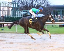 Uncontested and Channing Hill in the Smarty Jones. Oaklawn Park photo