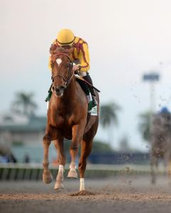 Joel Rosario and Irish War Cry. Gulfstream Park photo
